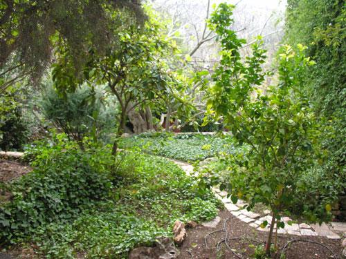 16-יום כייף בחנוכה - בירושלים