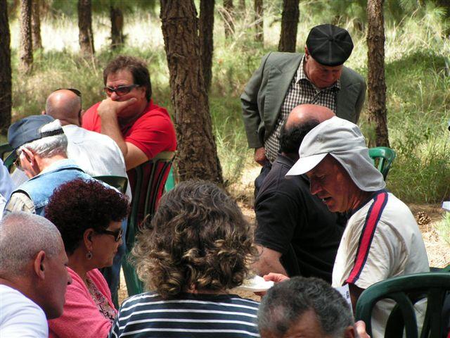 13-יער השבויים והנעדרים