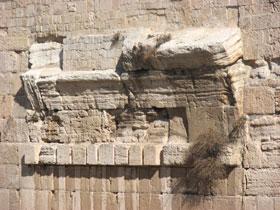 טיול לירושלים 2006