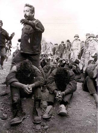 סוריה 1973